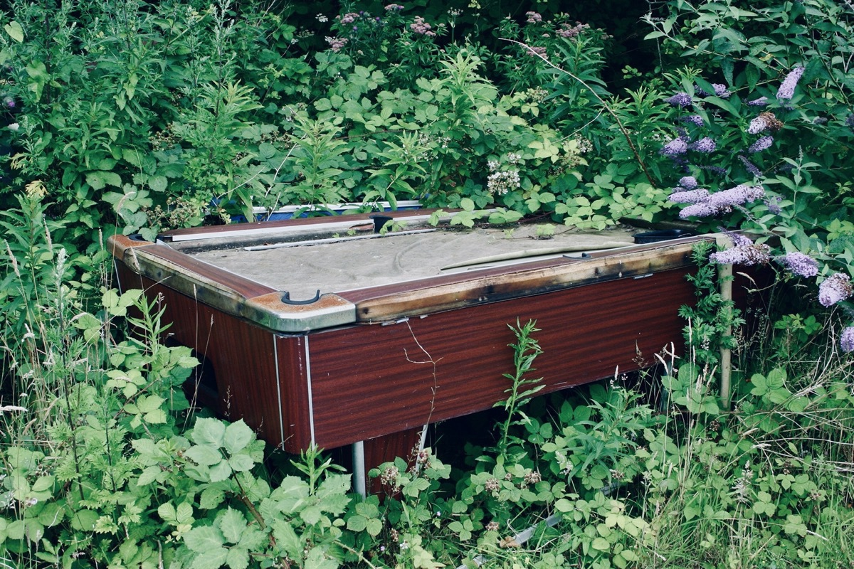 Pool table in undergrowth